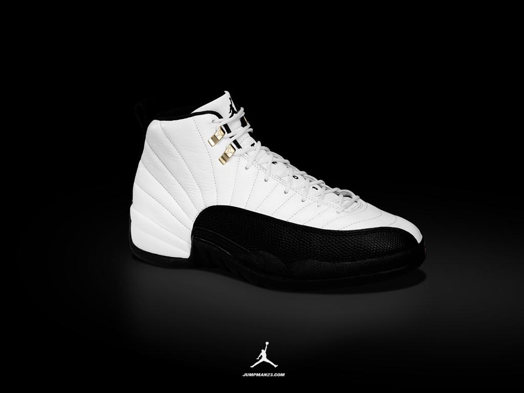 Air Jordan 12 Shoe